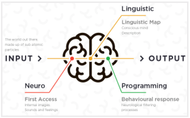 If you've never heard of NLP, it's time you learn about it and start to incorporate it into your sales pitch. NLP stands for Neuro-Linguistic Programming